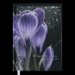 Ежедневник недатированный Buromax POSH А5  черный 288 с (BM.2013-01)