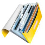 Папка с отделениями Leitz WOW A4  желтый металлик (4589-00-16)