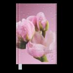 Ежедневник датированный 2022 Buromax POSH А6 розовый 336 с (BM.2536-10)