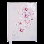 Ежедневник недатированный Buromax FILLING А5 розовый 288 с (BM.2031-10)