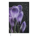 Ежедневник недатированный Buromax POSH А6 черный 288 с (BM.2627-01)