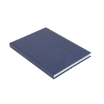 Книга канцелярская Buromax, А4, 192 л, клетка, бумвинил, офсет, твердая обложка (BM.2406)
