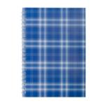 Тетрадь на пружине сбоку Buromax Shotlandka, А5, 48л., клетка, картонная обложка, синий (BM.2591-02)
