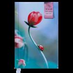 Ежедневник недатированный Buromax Grace, А6, 288 стр., бирюзовый (BM.2603-06)