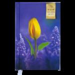 Ежедневник недатированный Buromax Grace, А6, 288 стр., фиолетовый (BM.2603-07)