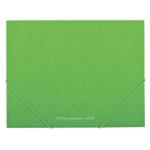 Папка пластиковая на резинках Buromax Barocco, А5, салатовый (BM.3902-15)