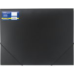 Папка пластиковая на резинках Buromax Professional, А3, черный (BM.3918-01)