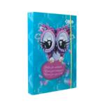 Папка для тетрадей ZiBi Owl, картонная на резинке, B5+ 175х245х25мм (ZB.14980)