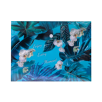 Папка-конверт на кнопке Buromax пластиковая Exotic B5 Голубой (BM.3956-14)