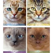 """Тетрадь 48л. (клетка) """"Котячьи портреты"""" (ТА5.4811.2677к)"""
