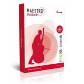 Папір MAESTRO STANDARD+ А3 500л (MS.A3.80.ST)