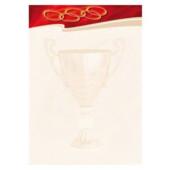 Картон для дипломов Galeria Papieru Sport N 25 шт (1620102001801)
