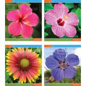 "Тетрадь 60л. (линия) ""Цветы"" (TA5.6021.2923)"